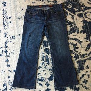 Express Jeans (Eva Fit & Flare) SIZE 10 L